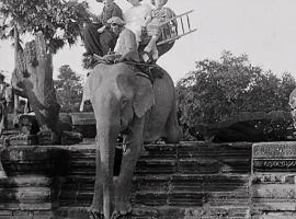 «La France est notre patrie» (Rithy Panh) : On gagnerait tous à s'intéresser davantage à l'éléphant…