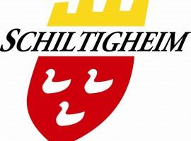 La ville de Schiltigheim recherche un-e réalisateur-trice de webdocumentaire