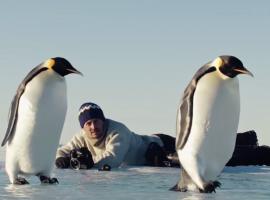 «Antarctica» : la folle expédition de deux photographes, sur et sous la banquise